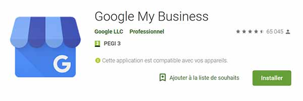 application google my business